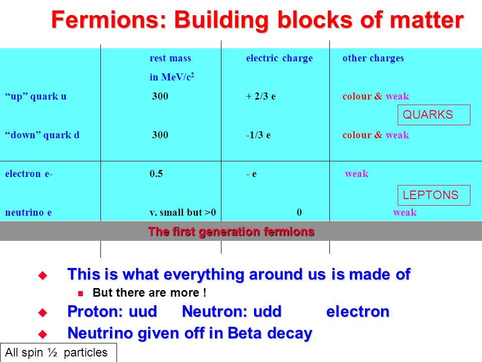 Fermions: Building blocks of matter