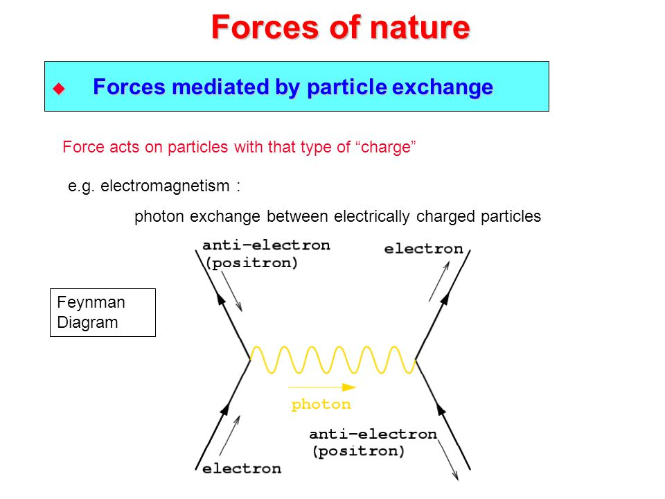 Forces of nature Forces mediated by particle exchange