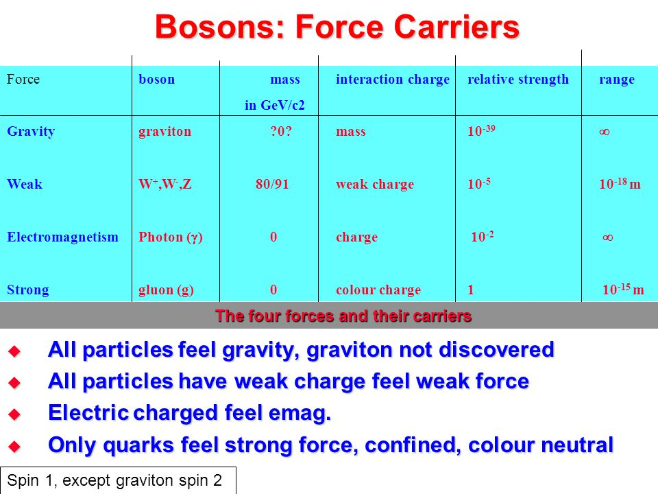 Bosons: Force Carriers