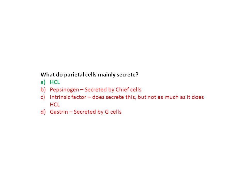 What do parietal cells mainly secrete
