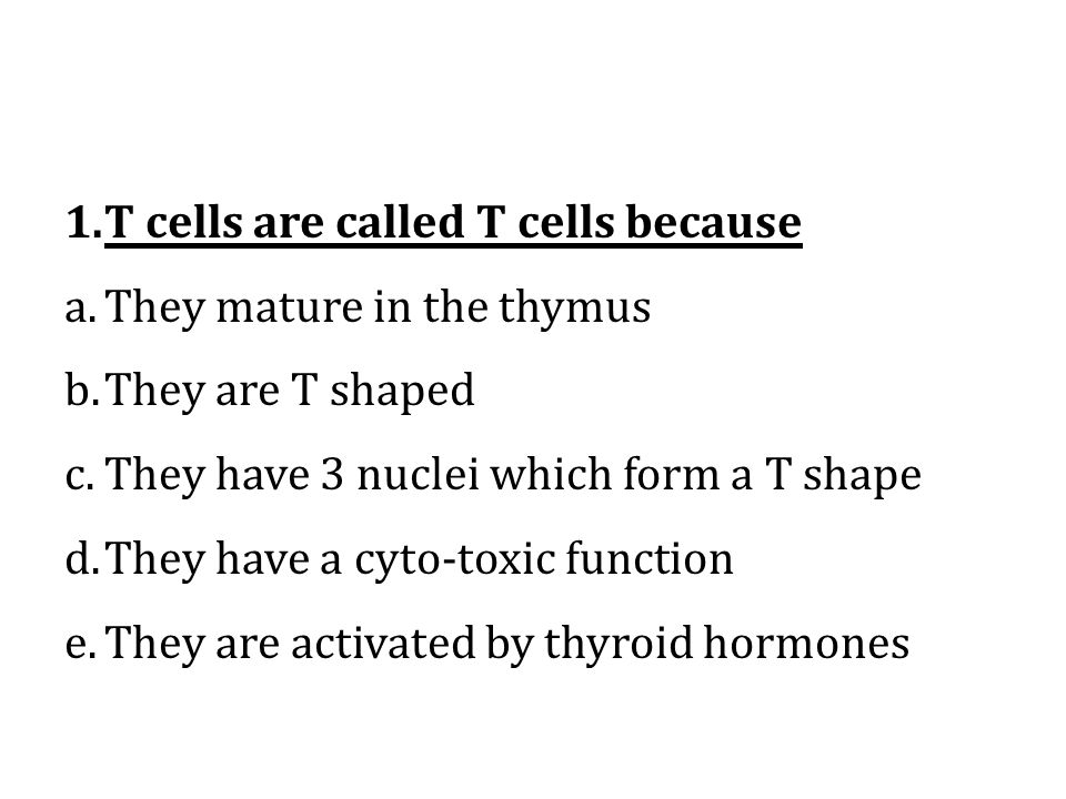 T cells are called T cells because