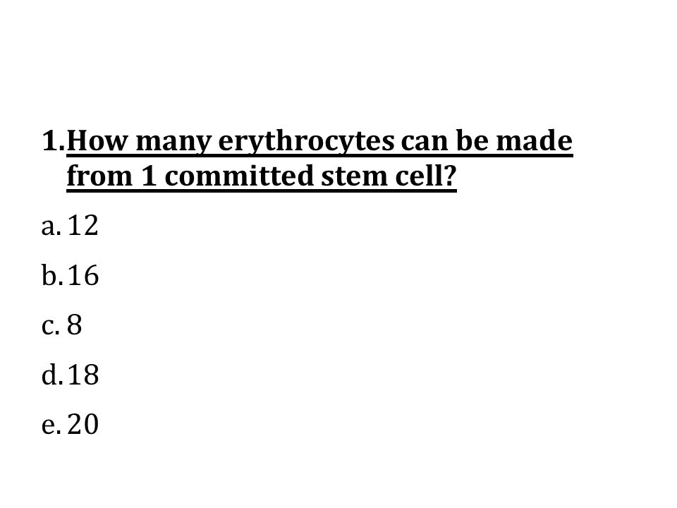How many erythrocytes can be made from 1 committed stem cell