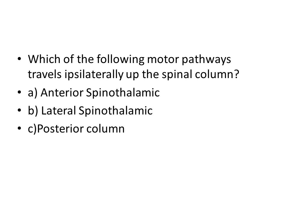 Which of the following motor pathways travels ipsilaterally up the spinal column
