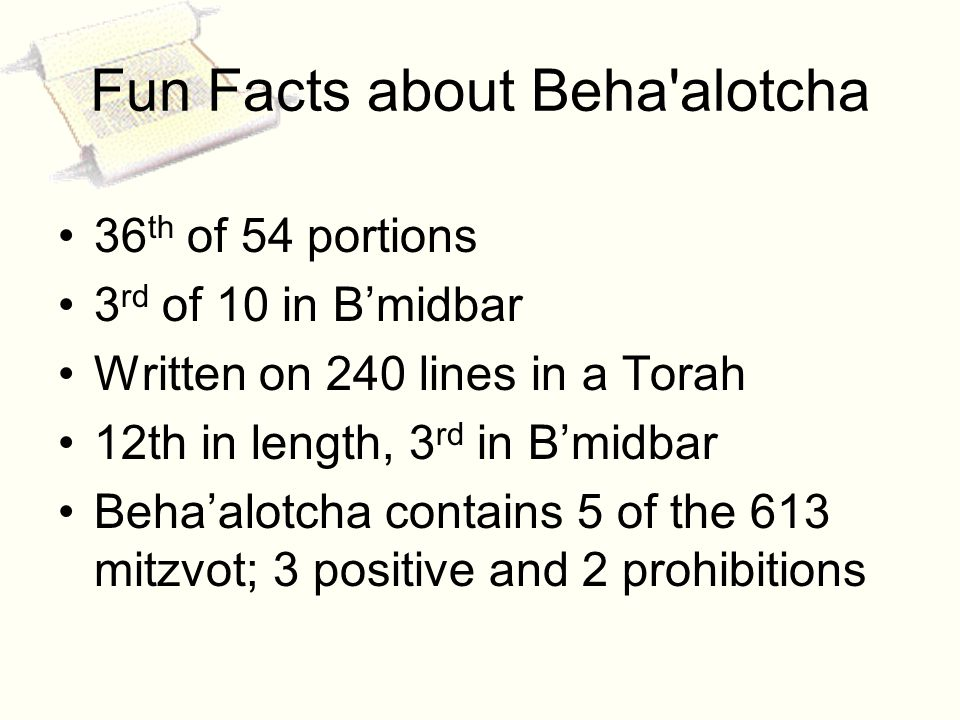 Fun Facts about Beha alotcha