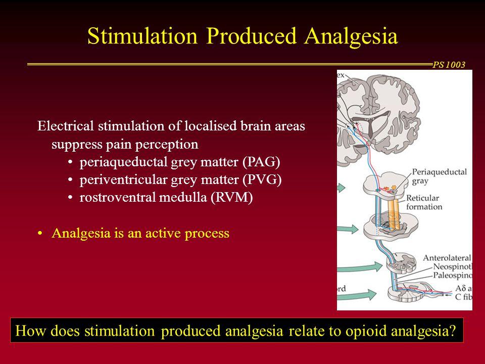 Stimulation Produced Analgesia