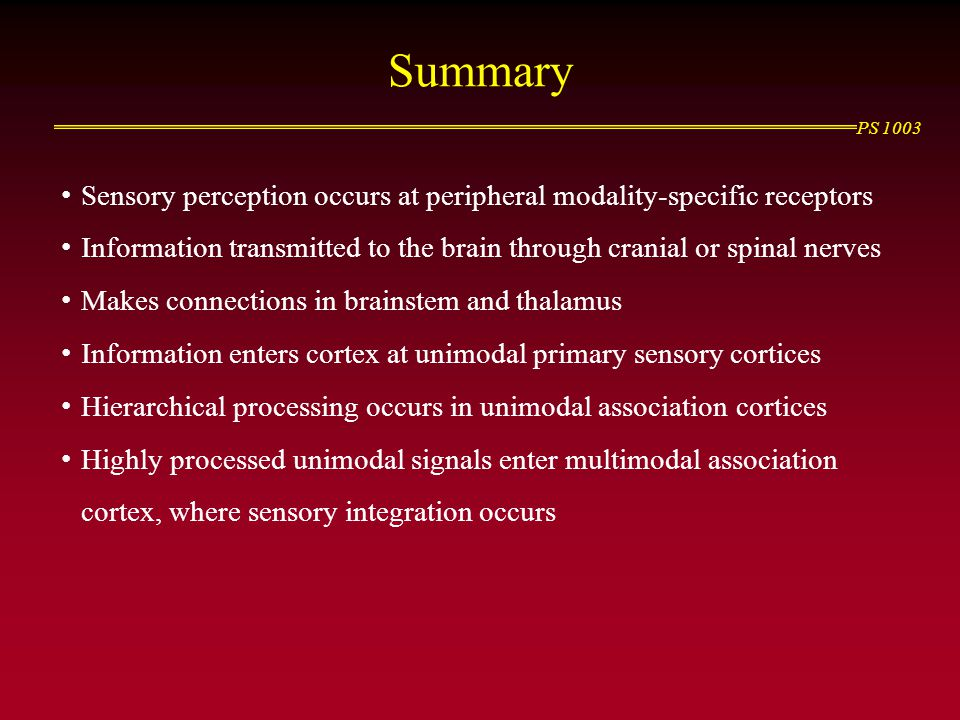 Summary Sensory perception occurs at peripheral modality-specific receptors. Information transmitted to the brain through cranial or spinal nerves.