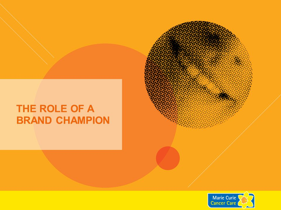 The role of a brand champion