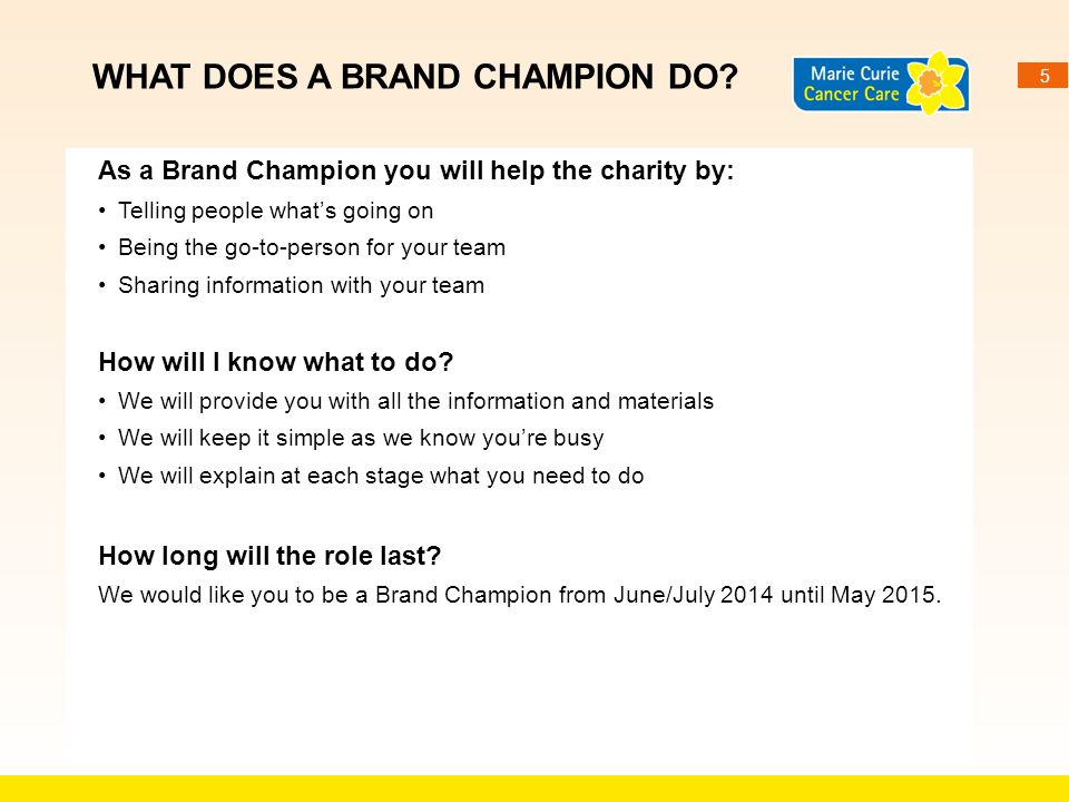 WHAT DOES A BRAND CHAMPION DO
