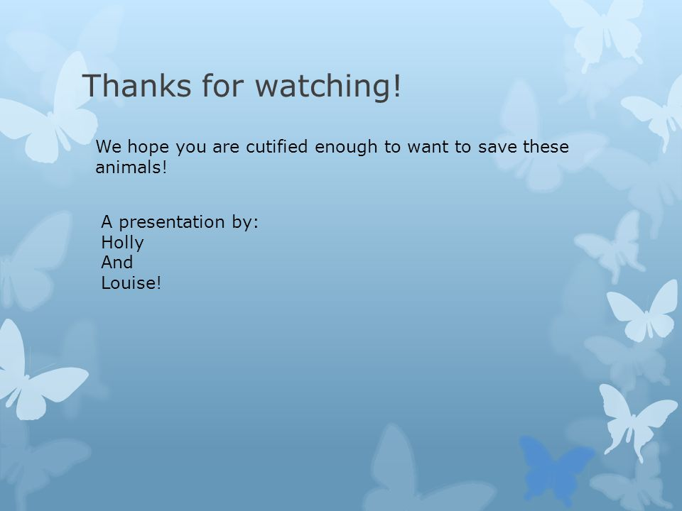 Thanks for watching! We hope you are cutified enough to want to save these animals! A presentation by: