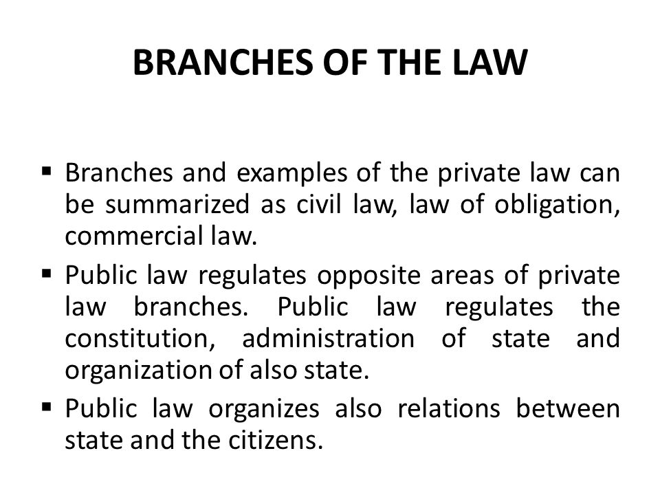 BRANCHES OF THE LAW Branches and examples of the private law can be summarized as civil law, law of obligation, commercial law.