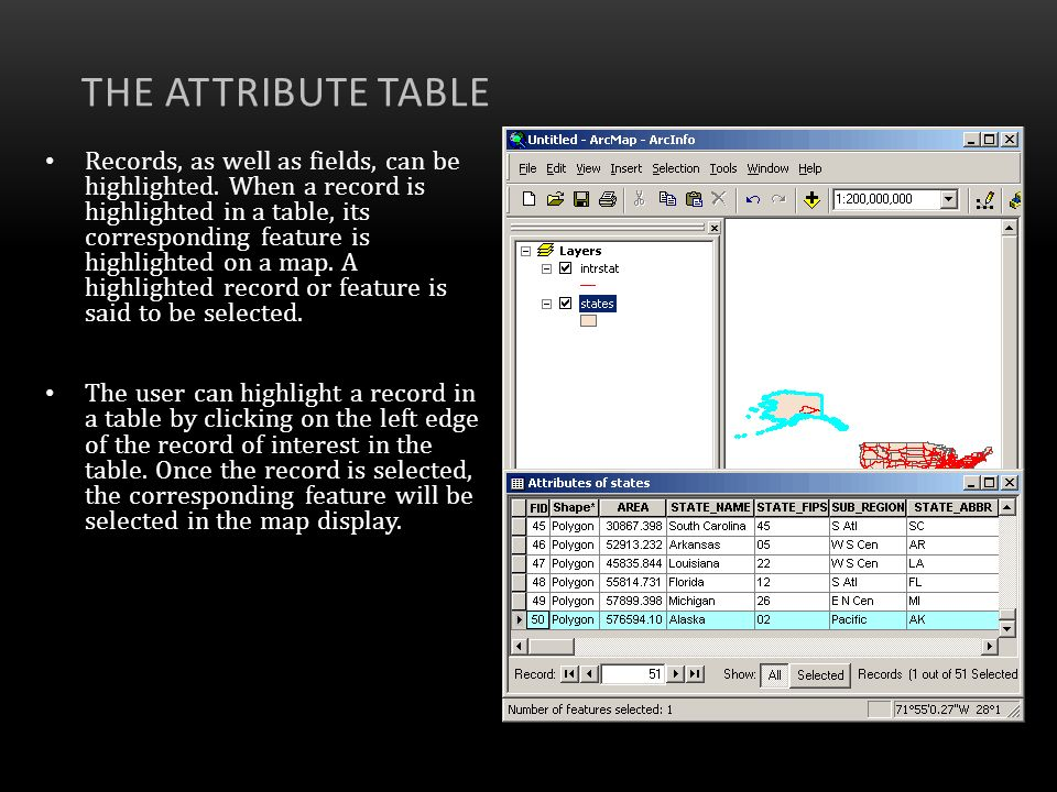 The Attribute Table