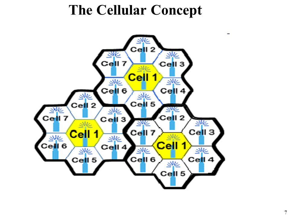 The Cellular Concept