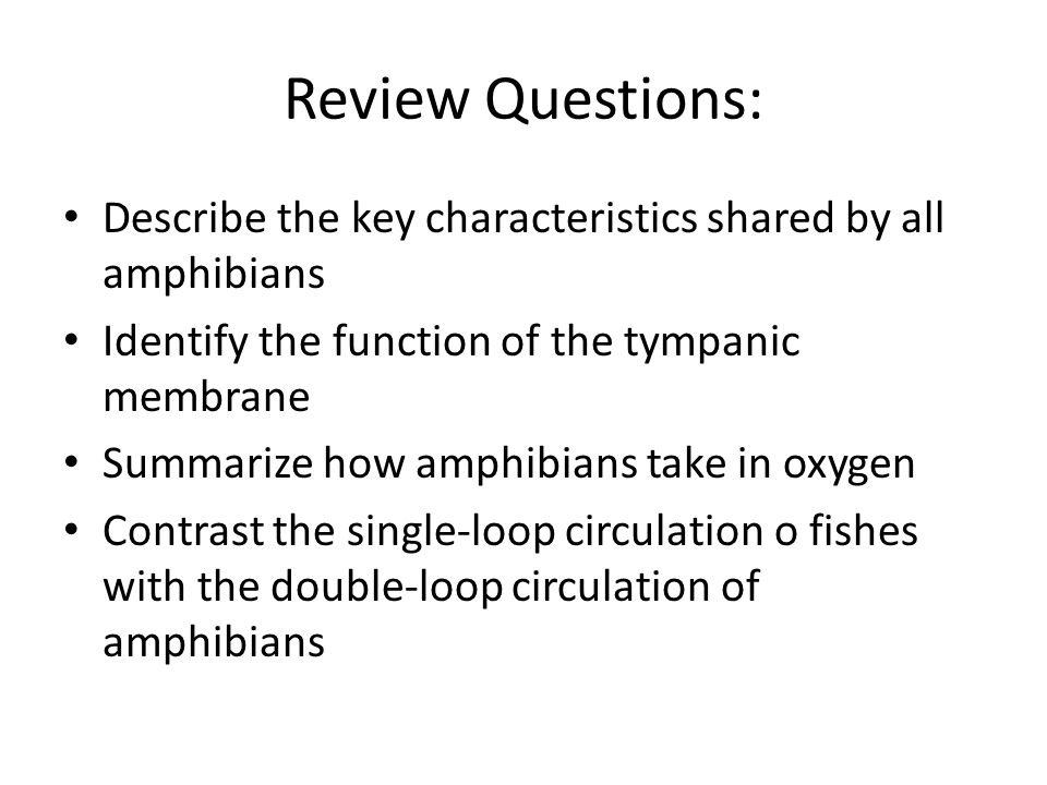 Review Questions:Describe the key characteristics shared by all amphibians. Identify the function of the tympanic membrane.