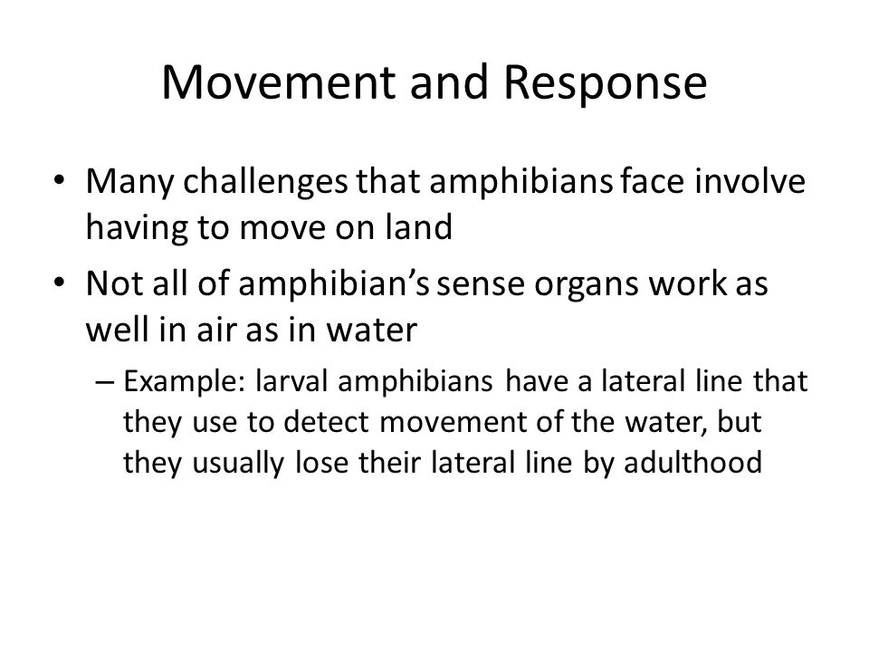 Movement and ResponseMany challenges that amphibians face involve having to move on land.