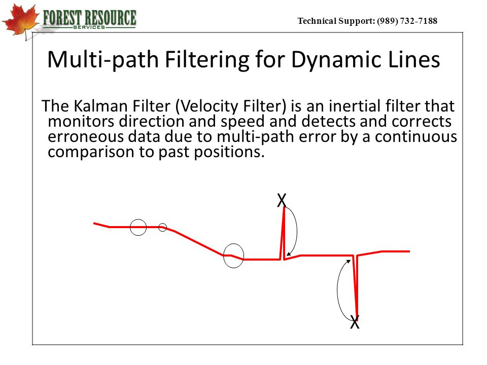 Multi-path Filtering for Dynamic Lines