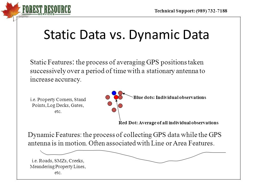 Static Data vs. Dynamic Data