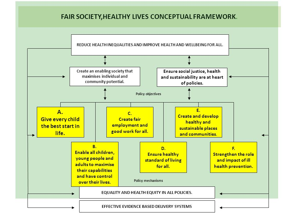 FAIR SOCIETY,HEALTHY LIVES CONCEPTUAL FRAMEWORK.