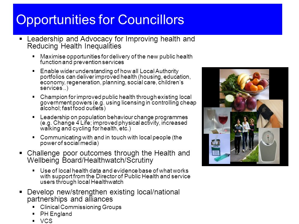 Opportunities for Councillors
