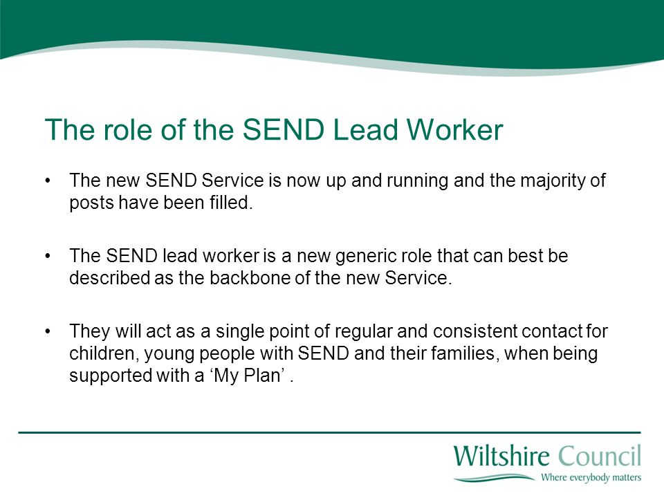 The role of the SEND Lead Worker