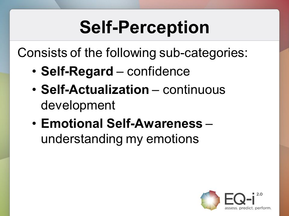 Self-Perception Consists of the following sub-categories: