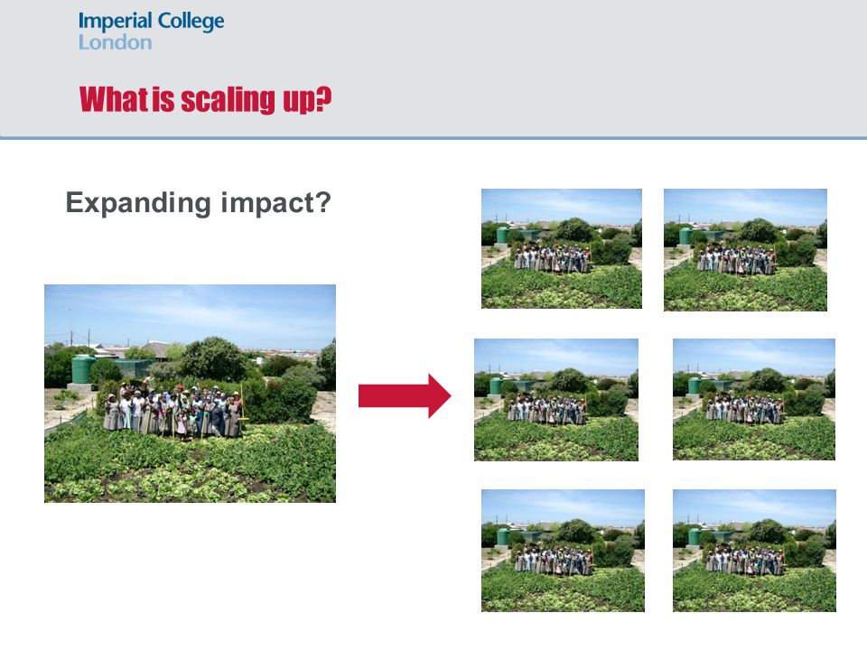 What is scaling up Expanding impact