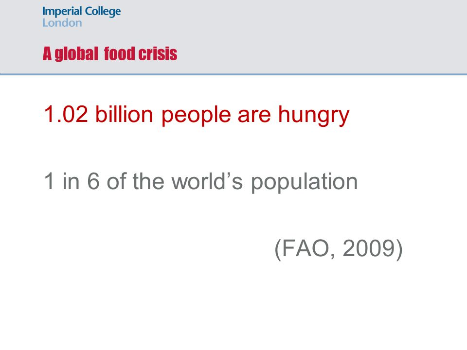 1.02 billion people are hungry 1 in 6 of the world's population