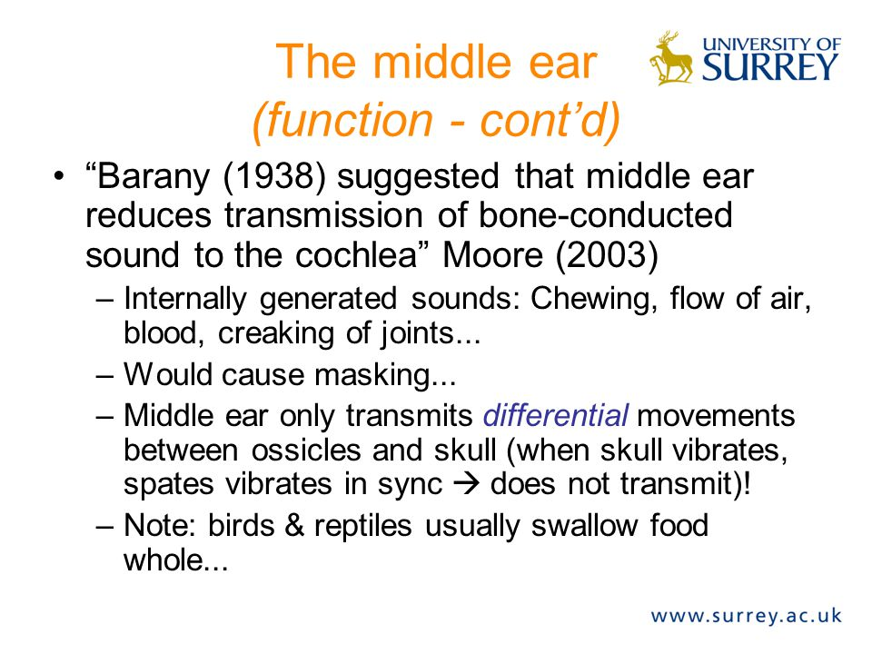 The middle ear (function - cont'd)