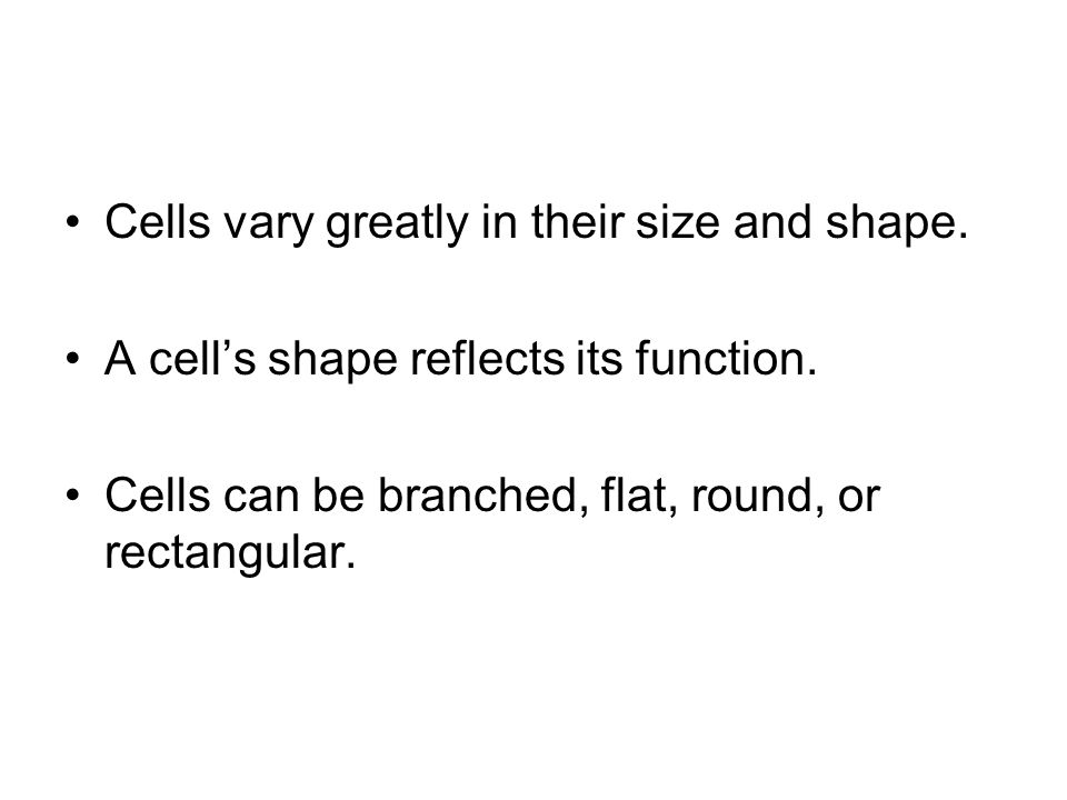 Cells vary greatly in their size and shape.
