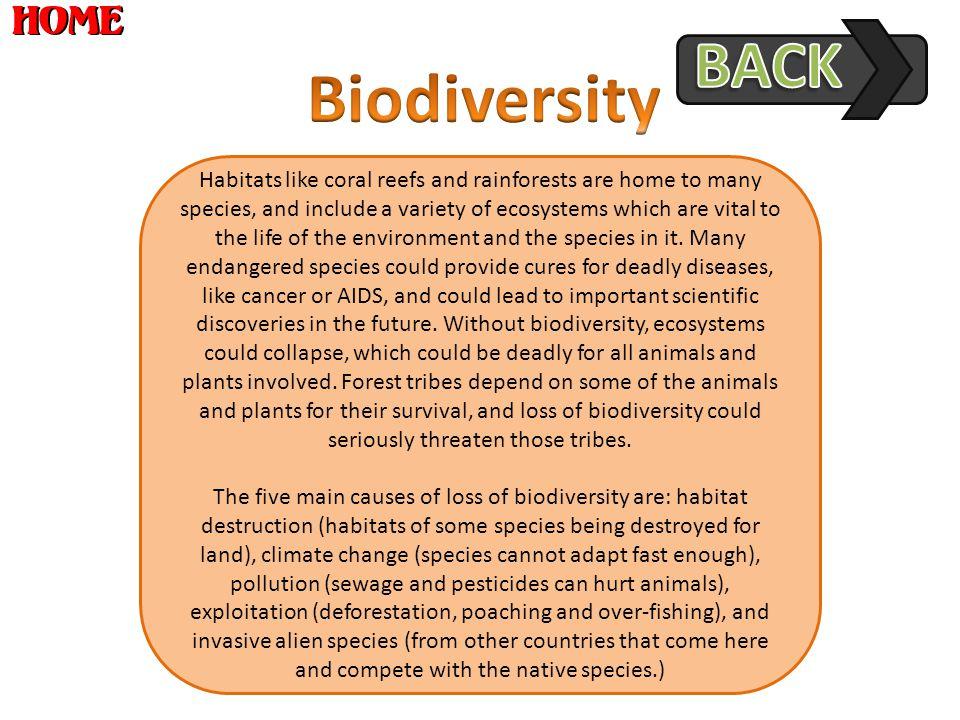 BACK Biodiversity.