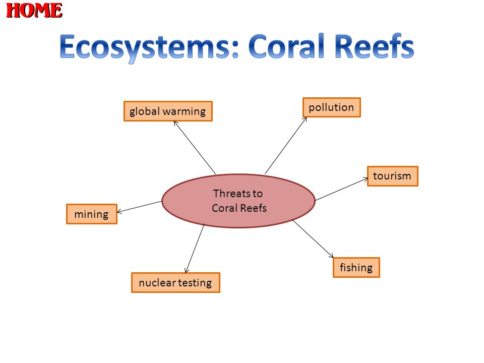 Ecosystems: Coral Reefs