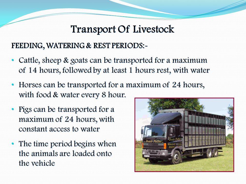 Transport Of Livestock