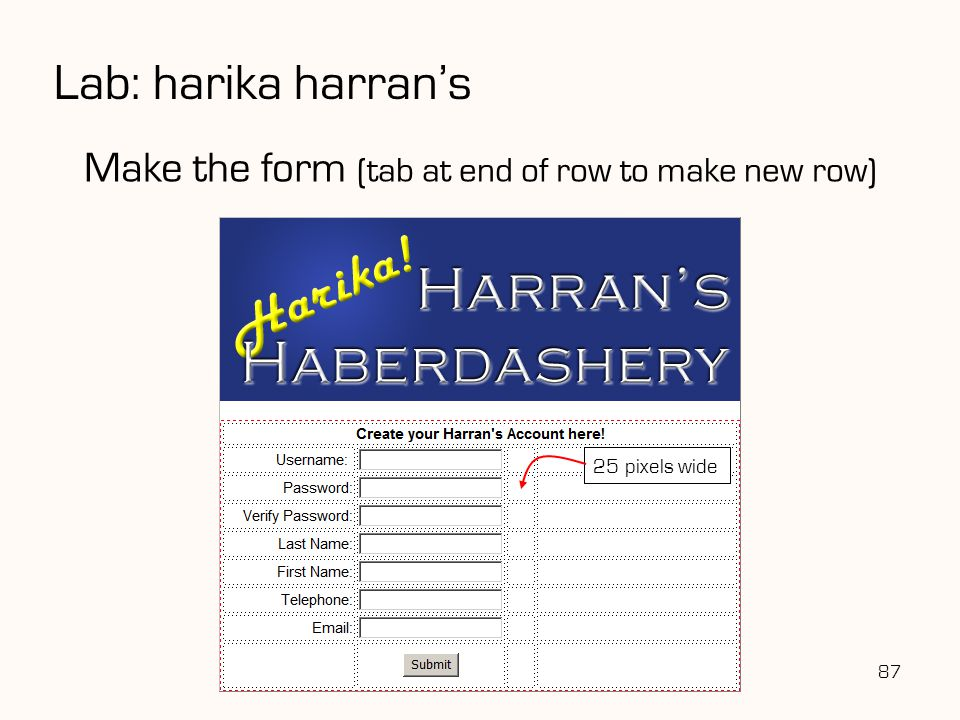 Lab: harika harran's Make the form (tab at end of row to make new row)
