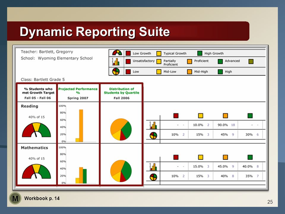 Dynamic Reporting Suite