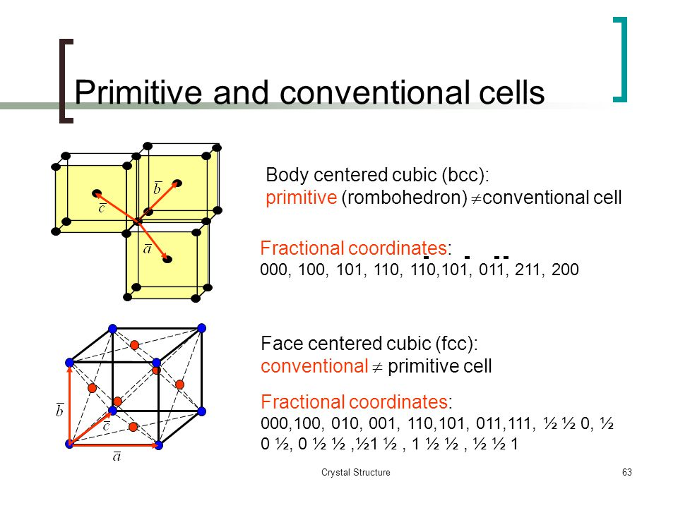 Primitive and conventional cells