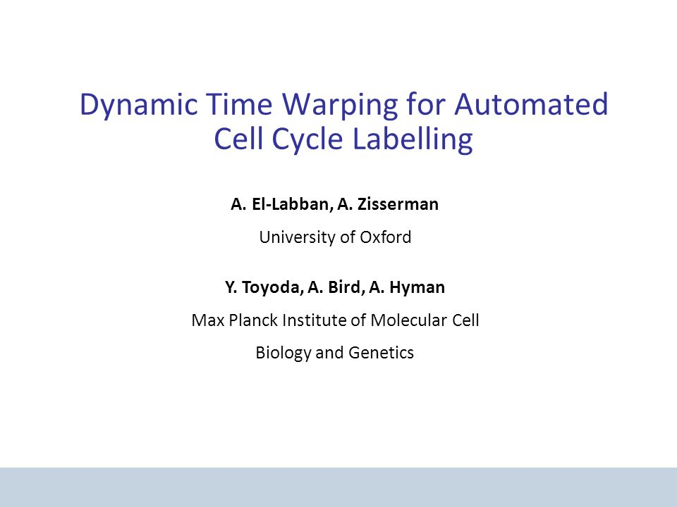 Dynamic Time Warping for Automated Cell Cycle Labelling