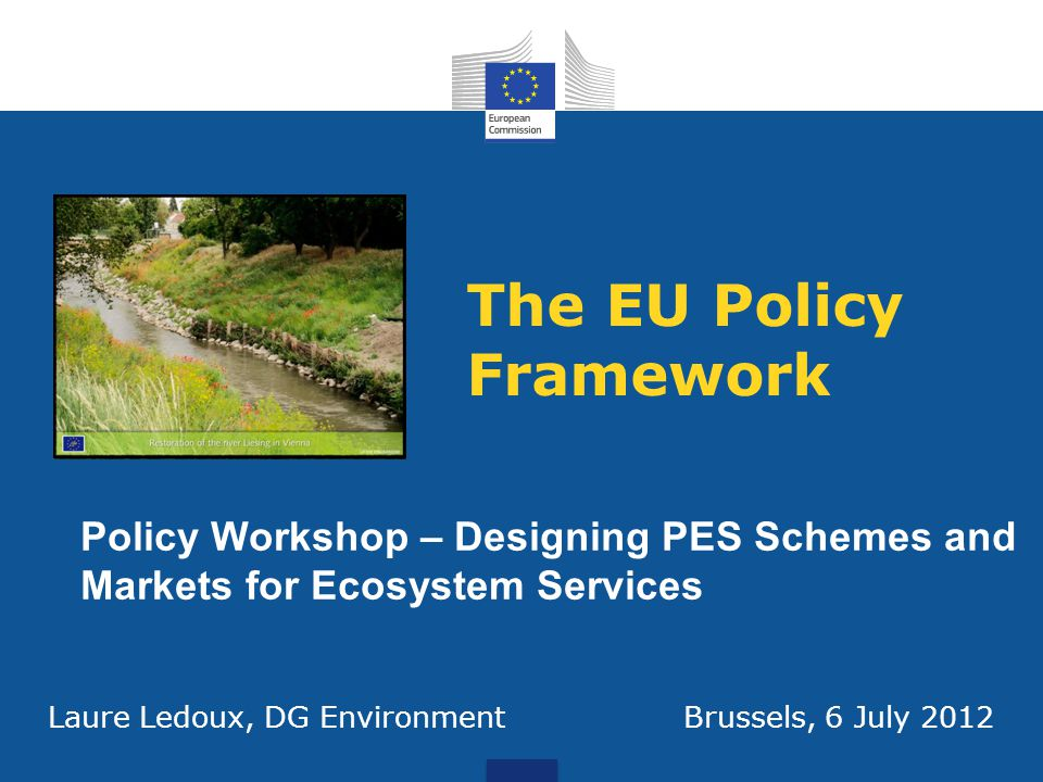 The EU Policy Framework