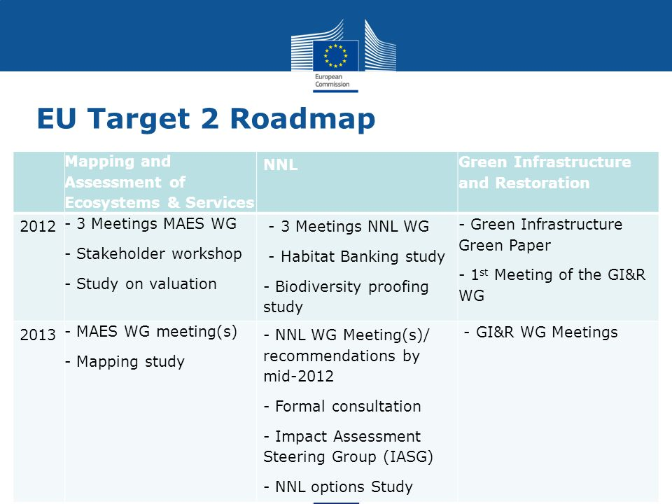 EU Target 2 Roadmap Mapping and Assessment of Ecosystems & Services