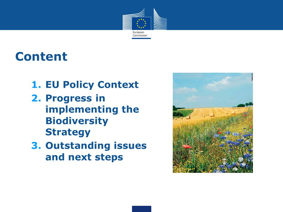 Content EU Policy Context