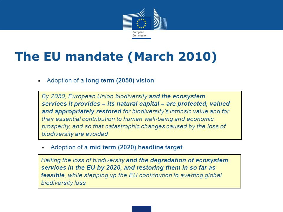 The EU mandate (March 2010) 3 Adoption of a long term (2050) vision