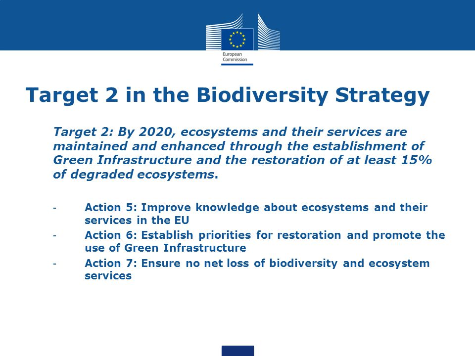 Target 2 in the Biodiversity Strategy