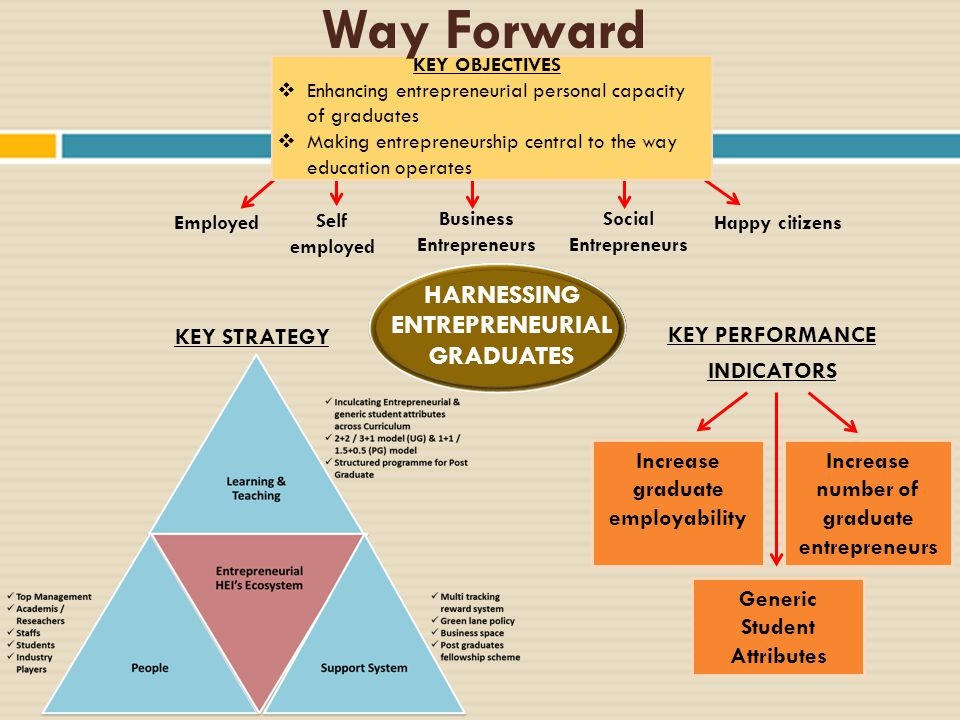Way Forward HARNESSING ENTREPRENEURIAL GRADUATES KEY STRATEGY