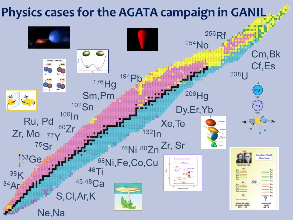 Physics cases for the AGATA campaign in GANIL