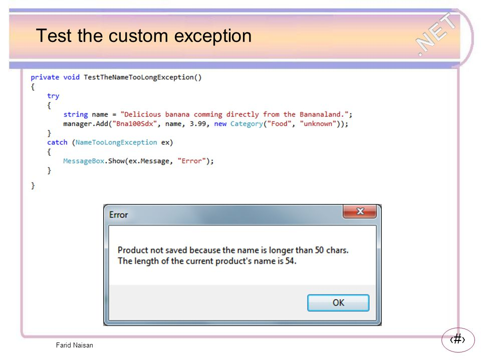 Test the custom exception