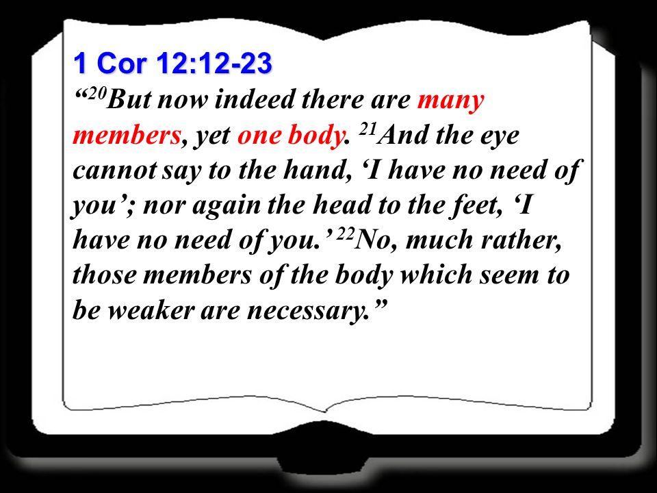 1 Cor 12:12-23
