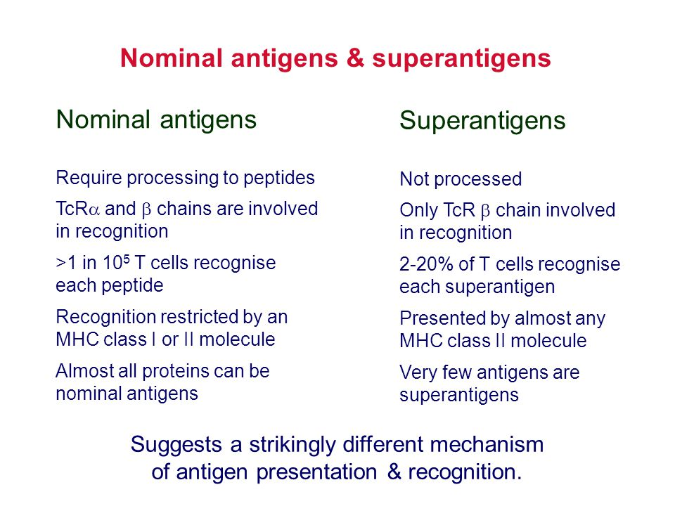 Nominal antigens & superantigens