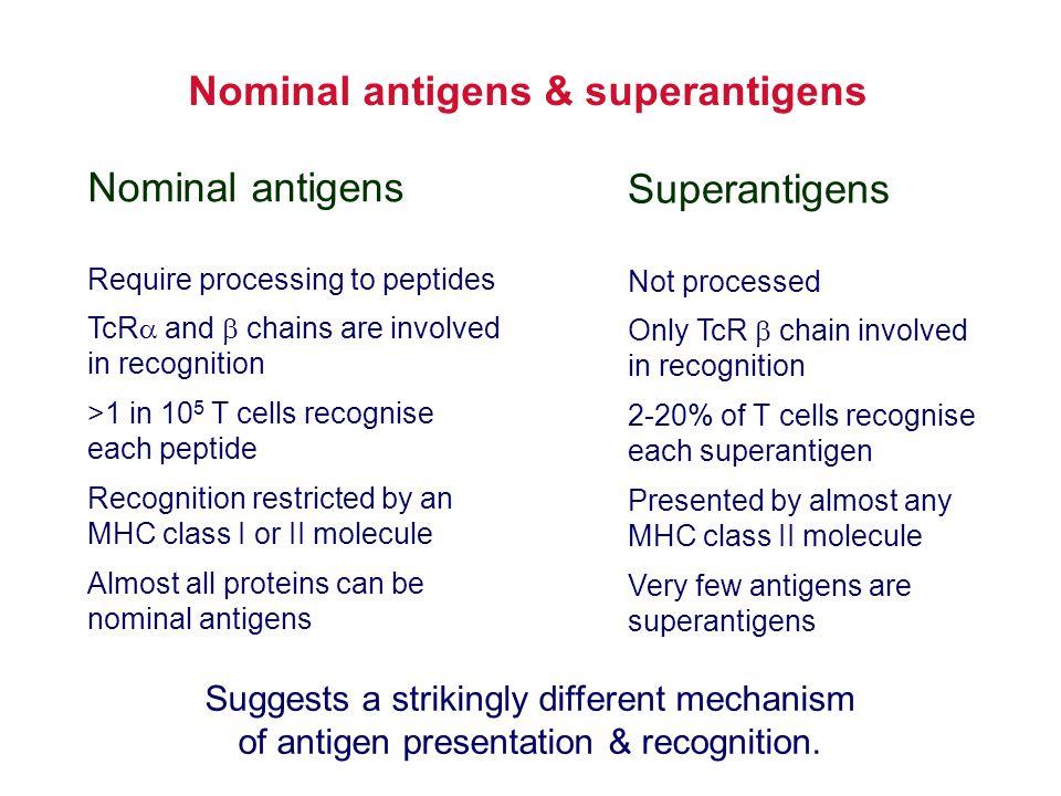 Nominal antigens & superantigens