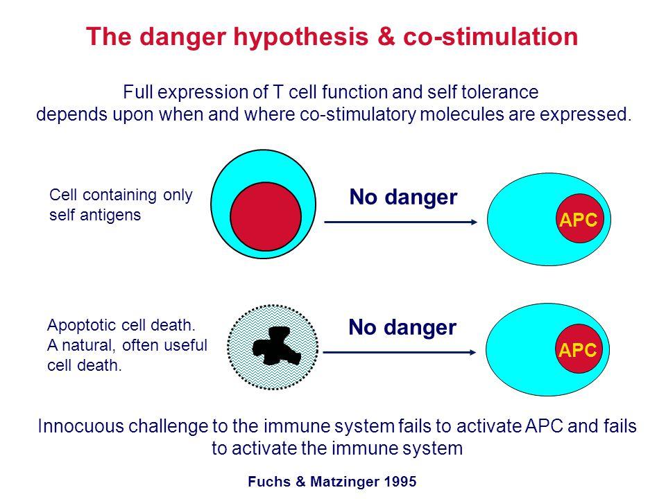 The danger hypothesis & co-stimulation