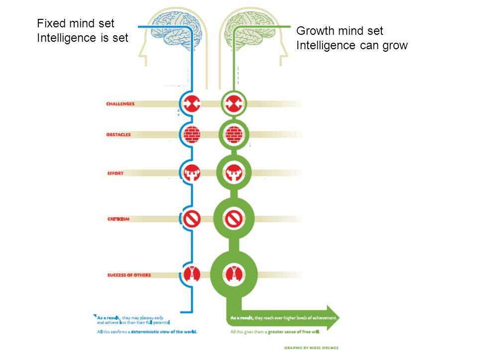Fixed mind set Intelligence is set. Growth mind set. Intelligence can grow. Leads to a desire to look smart.