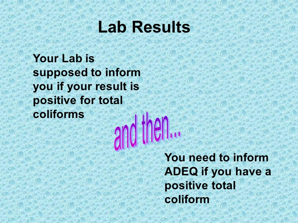 Lab Results Your Lab is supposed to inform you if your result is positive for total coliforms. and then...