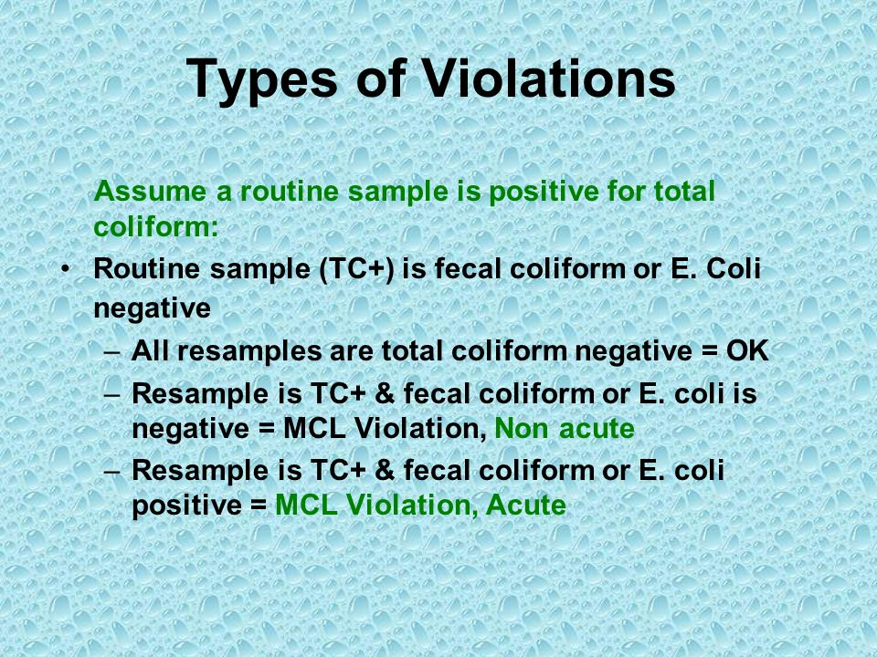 Types of Violations Assume a routine sample is positive for total coliform: Routine sample (TC+) is fecal coliform or E. Coli negative.